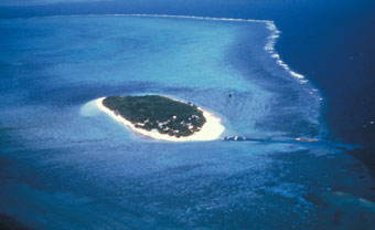 Image result for Barrier reef meaning