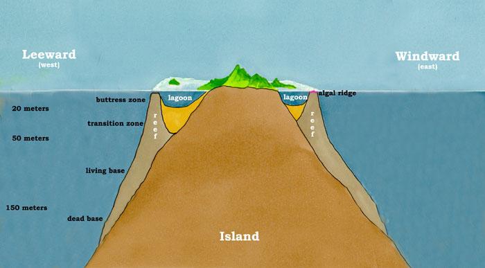 Barrier Island ...