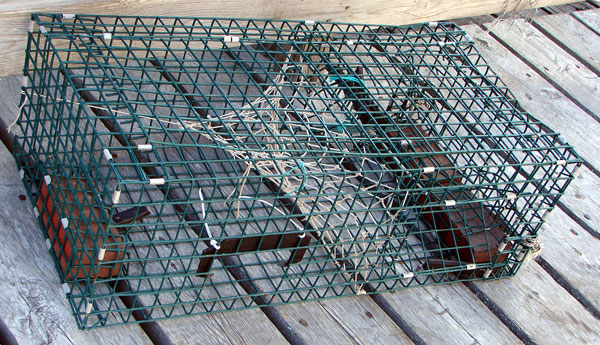 Lobster Trap Wire For Sale | Lobster House